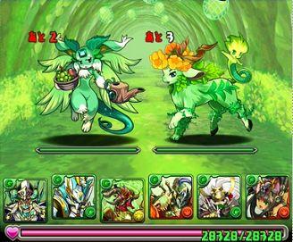 木の猫龍3F