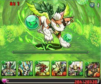 木の猫龍7F